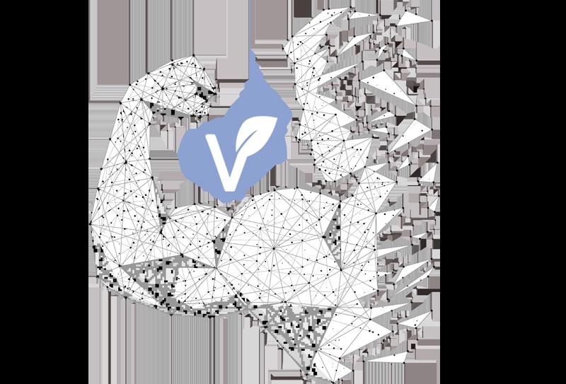 dieta vegetariana para deportistas de alto rendimiento pdf